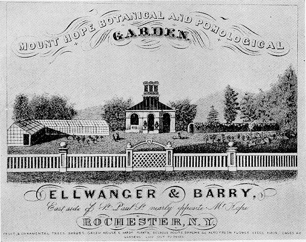 Ellwanger_&_Barry_nursery_advertisement