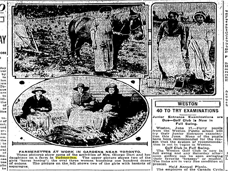 Farmerettes Todmorden