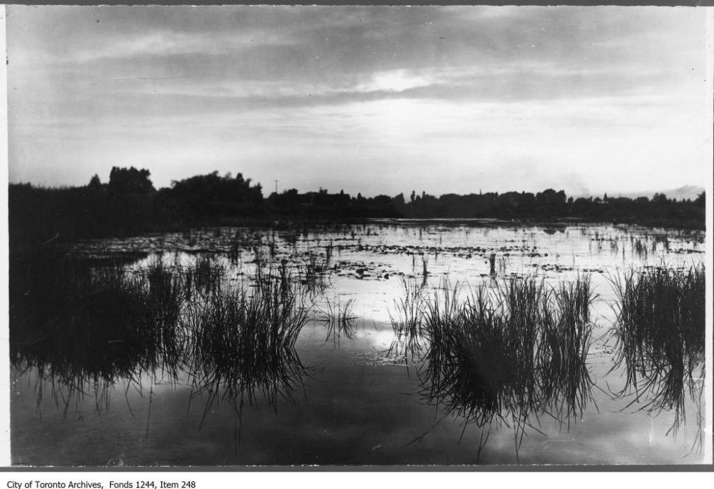 Sunset on Ashbridge's Bay. - [1909?]