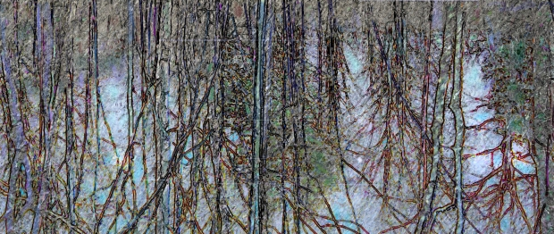 Vernal Pool, Humber River, 2013. Mixed media. Joanne Doucette.