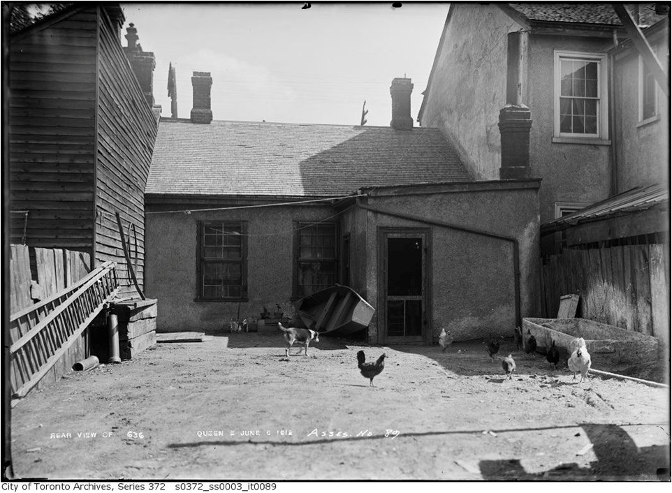Rear of rough cast house at 636 Queen St E. Houses like this, including poultry, were very common in Leslieville. If any remain they no longer resemble their original form.