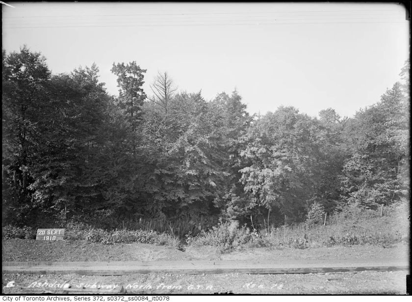 Hannah Bedell of Weston: ``Into the wilds below Monarch Park, where my grandfather would take me for rustic walks in …``The Ashdale Ravine, as we called it, meandered south from the park between Hiawatha Rd. and Ashdale Ave. toward Gerrard St. E. `As we strolled down there, amid a profusion of wildflowers, songbirds, towering trees and sparkling waters, it was very difficult to believe we were still in the city. ``Last time we checked out that neighborhood, our lovely ravine appeared to be filled in and gone, something we never imagined could happen to such a pretty place.'' Interviewed by George Gamester in The Toronto Star, 14 June 1995
