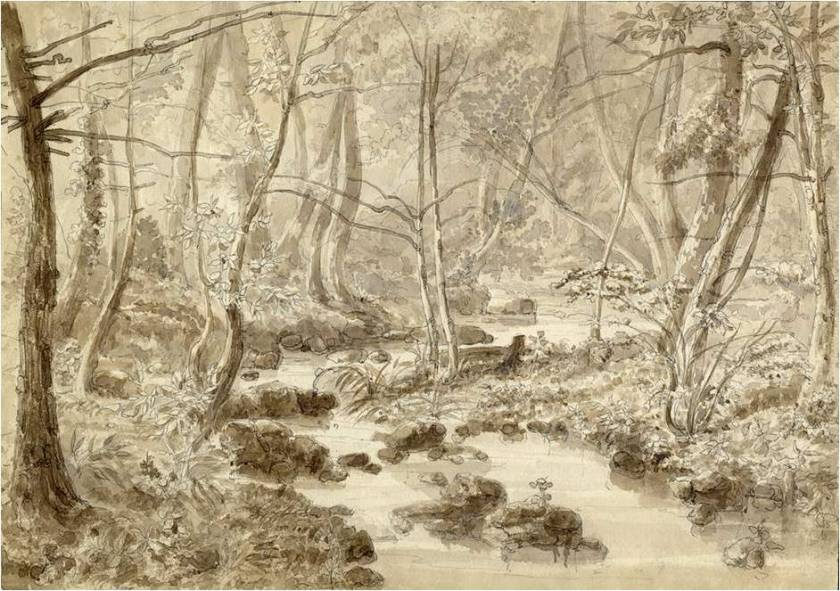 In The Woods Near Toronto, 1860. Artist Unknown.