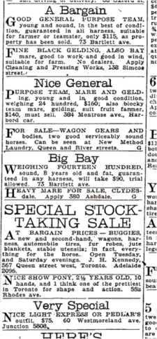 Heavy mare 380 Ashdale, Toronto Star, March 15, 1919