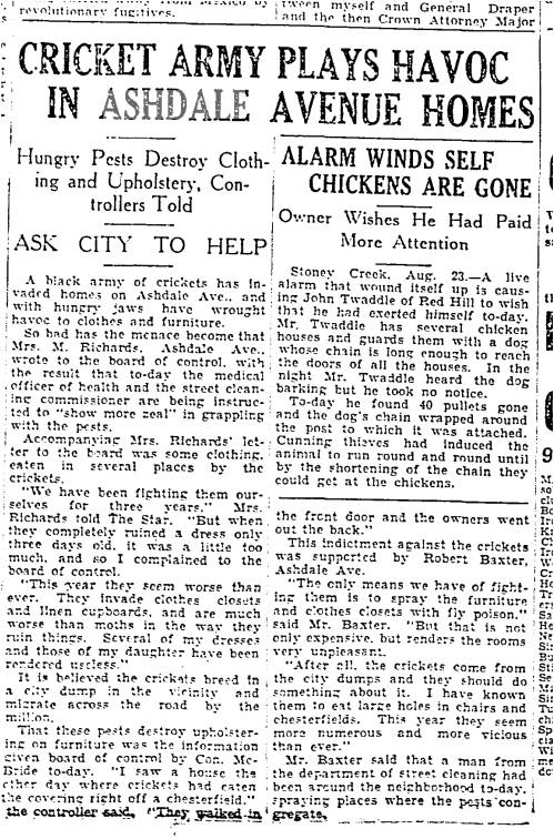 The East End became Toronto's dumping ground with the City dumping trash into the ravine where Glenside is now, the Ashdale ravine, etc. Rats, cockroaches and other critters infested the East End. Toronto Star, Aug. 23, 1933