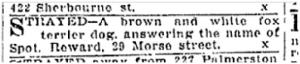 29 Morse Street, Toornto Star, Oct. 02, 1906