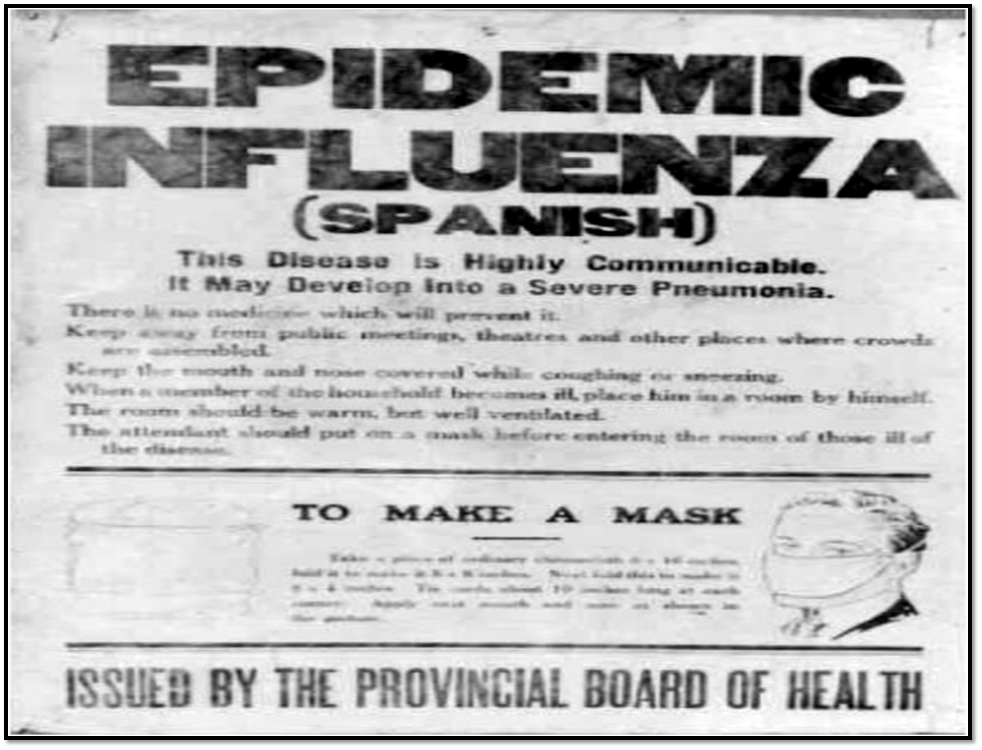 Influenza Epidemic