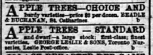 18730410GL Apple trees Leslie and rival