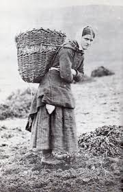collecting peat