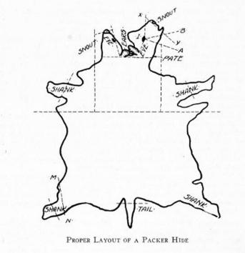 packers-encyclopedia-1922-2