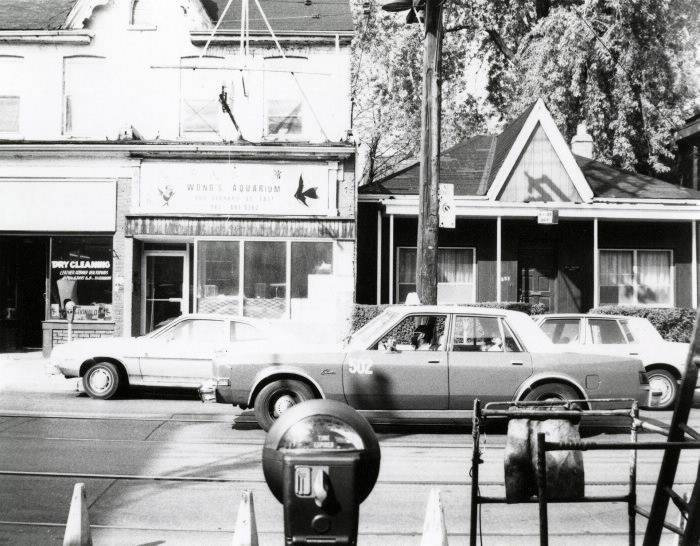 wongs-aquarium-broadview-gerrard-1984-photo-by-annette-mangaard-toronto-public-library