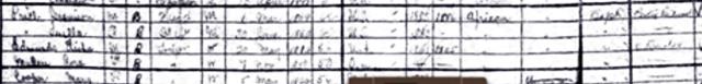 1901-census