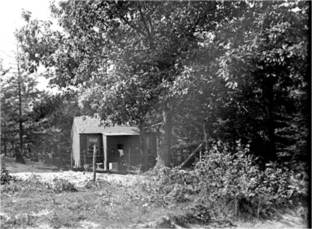 81-shack