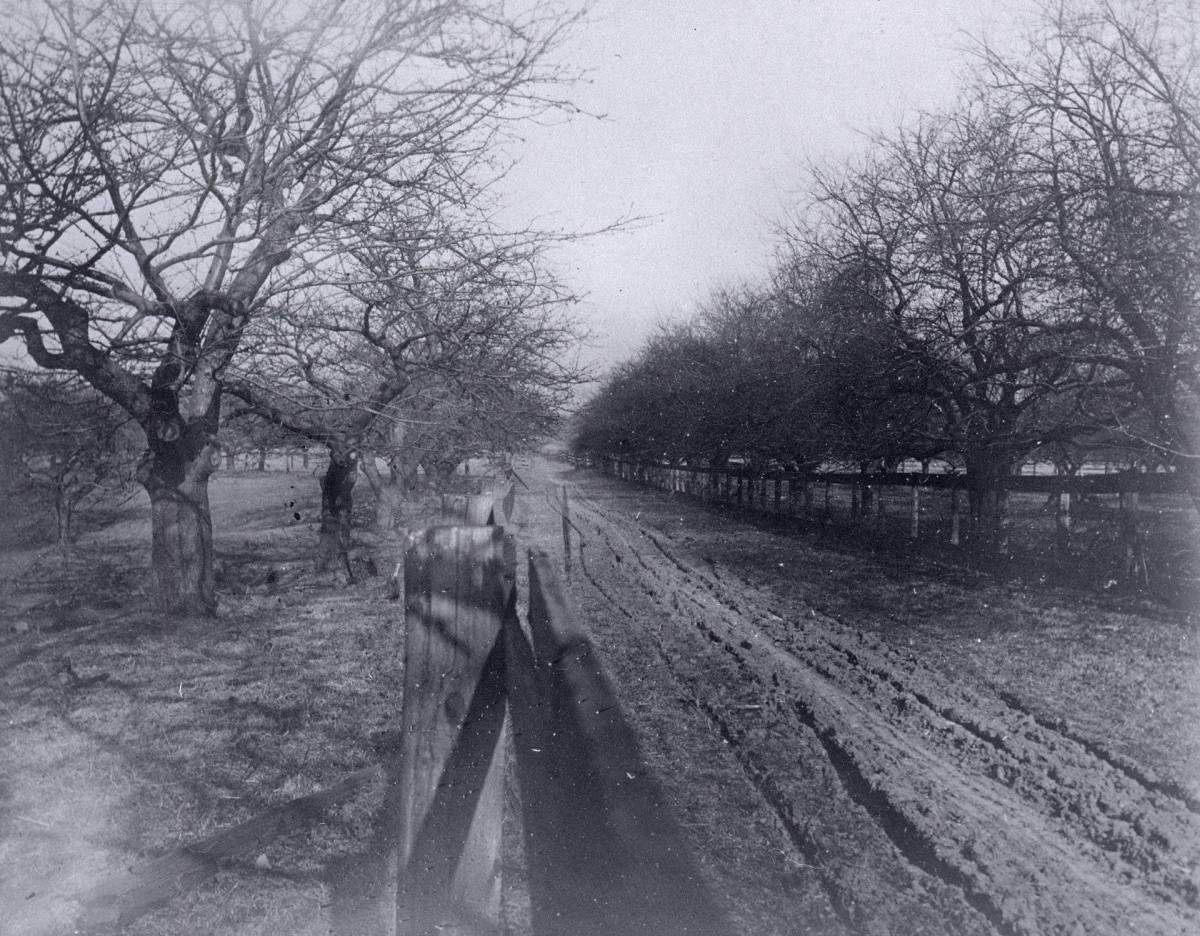 1906 Woodfield Rd USED