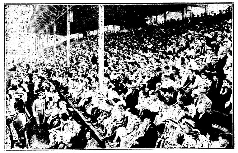 19310706TS Crowd Ulster Stadium - Copy