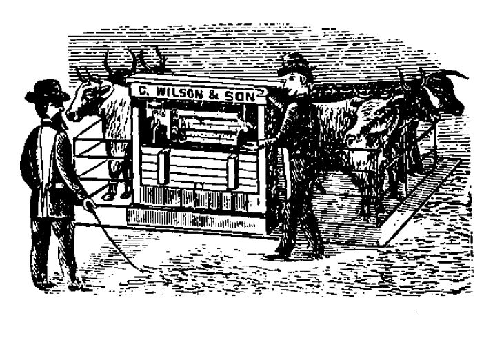 1882 County of York Directory and Gazeteer scales