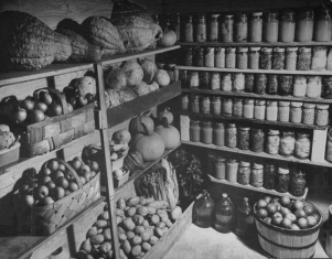 Interior, root cellar, 1910