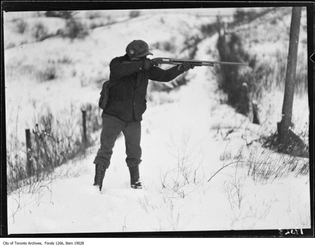 Clarkson rabbit hunt, hunter pointing gun. - January 18, 1930